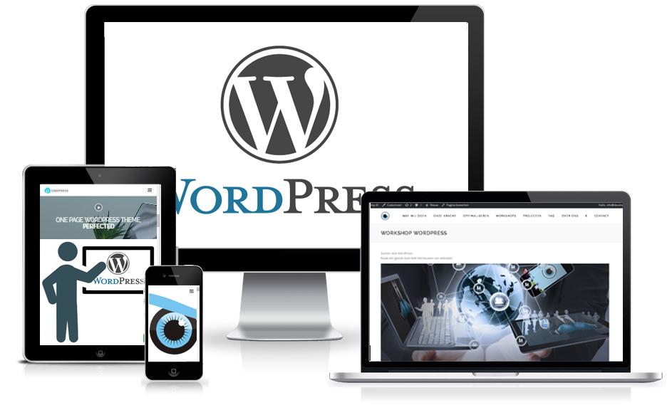 Leer WordPress met behulp van DevelopID