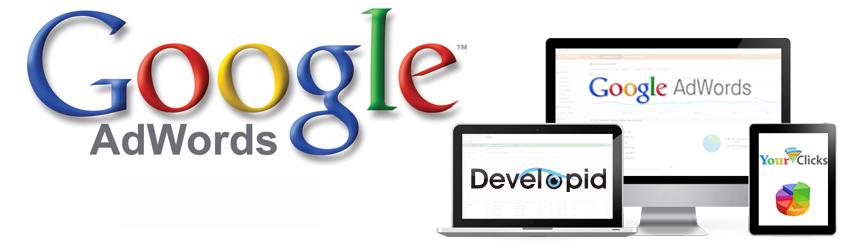 Google Adwords met advies van DevelopID